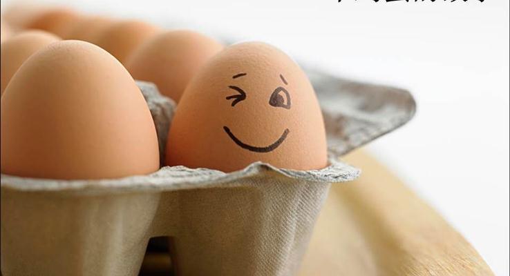 一个鸡蛋的哲理故事