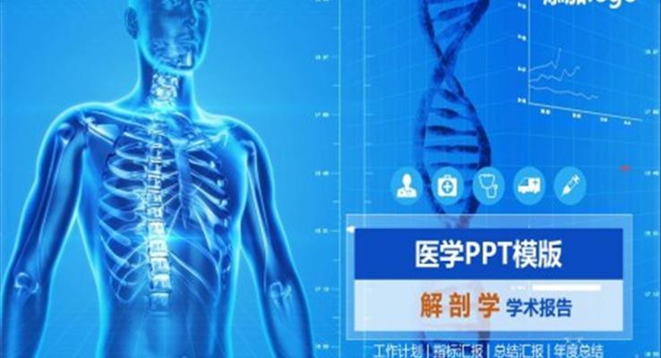解剖学学术报告PPT模板